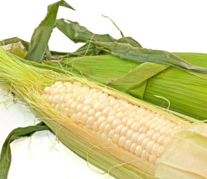corn-on-the-cob_Mk4D5IdO