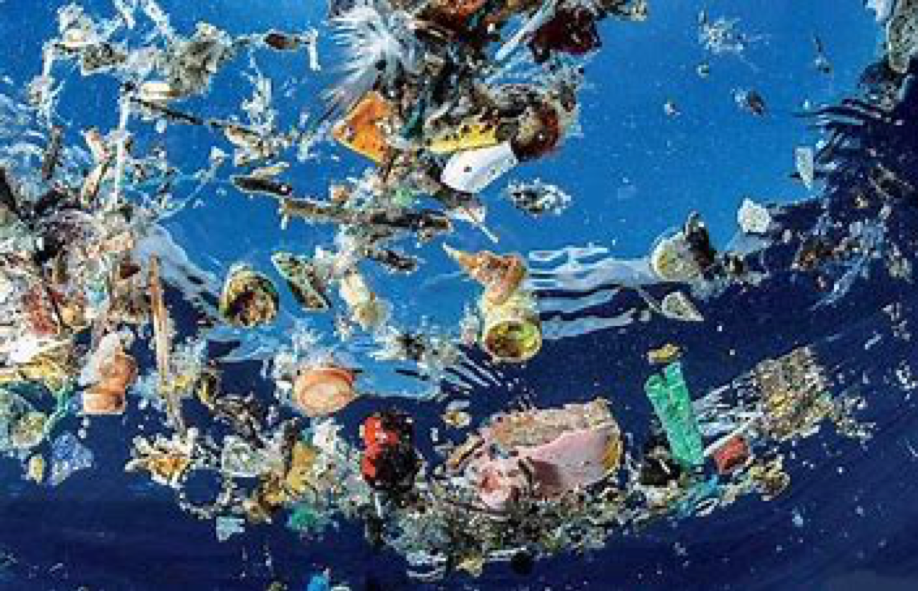 Ocean Plastic's Effects On Health